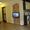 Сдается 1-комн. квартира на сутки в Бресте,  Гоголя,  евроремонт,  мебель #425013