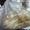 Куплю фторкаучук скф,  фторопласт трубы,  ленту,  порошок,  отходы и др. неликвиды #1687950