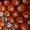 Предлагаем оптовые поставки мандаринов из Испании #1715444